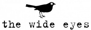 The Wide Eyes Text & Bird